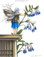 Mertensia by kitttykat
