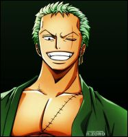 One Piece Roronoa Zoro 3 by Adonis90