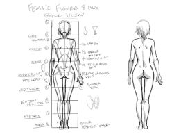 Female Figure back view tutorial by JetEffects