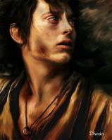 Frodo by Dhesia