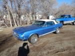 1967 Ford Mustang GT A Convertible by TheHunteroftheUndead