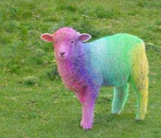 Spectrum Sheep by Ybpopular