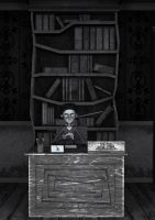 The Library by chamirra