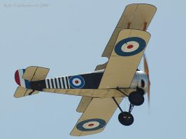 Sopwith Camel by Pilots