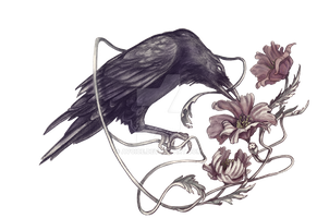 Crow and Poppies by Avoice