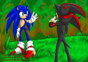 Sonic and Shadow - is it true? by BlizzardWolf