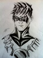 Red Robin Tim Drake by odrozz