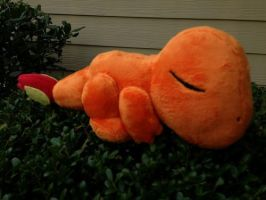Sleepy Charmander Plush by GlacideaDay