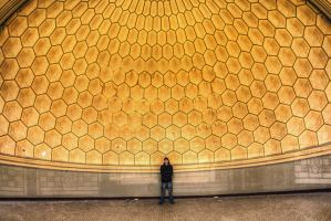 Theatre des Reines The Hive II by Bestarns