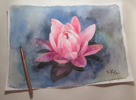 Water Lily by nguyenshishi