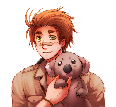 APH - Koala is CUTE by Zayrion
