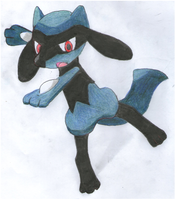 Riolu by IruzaNadiru