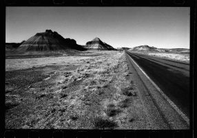 the road 2 by britegreenfish