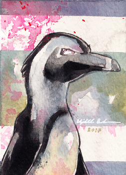Penguin ACEO by Redwall151