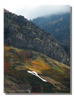 Autumn Colors on Y Mountain by WillFactorMedia