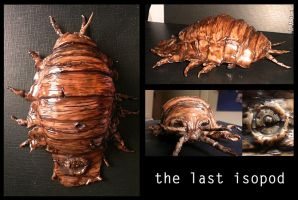 The last isopod by cryoclaire