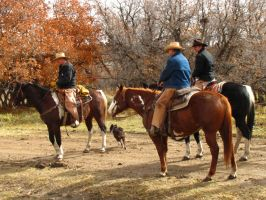 Cowboys 128 .:Stock:. by WesternStock