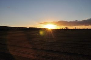Sun and Soil by MUNRO-JAMIE