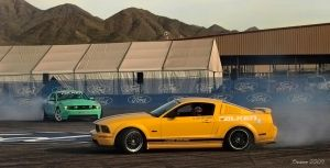 Mustang Drifters by Swanee3
