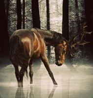 Blitzen Revisited by Jaxim