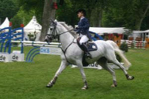 Show Jumping Stock 010 by LuDa-Stock