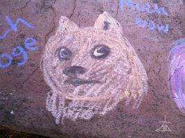 Chalk Art- Doge by DemonRemorse