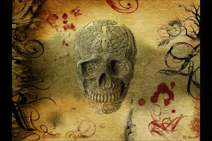 Skull-Paper by replicant