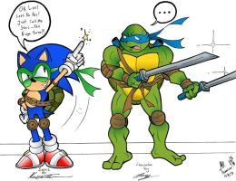 Collab/Crossover Sonic and Leonardo! by MrTumminia
