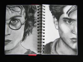 Potter vs Cullen by Kareeeoes