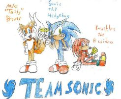Team Sonic by Tailic
