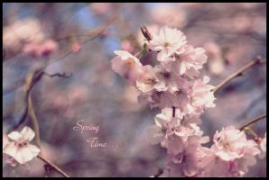 Spring Time 8 by pushparaj