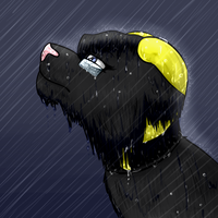 Sin in the Rain by SinLigereep