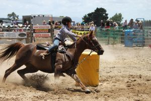 Taupo Rodeo 183 by Sooty-Bunnie