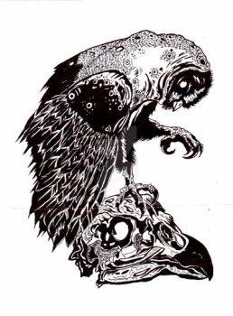 Skecth Owl Ink by zhie87