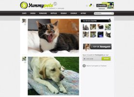 Yummypets - Social network for cute pets by GrunySo