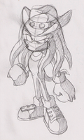 Knuckles and his hat by adamis