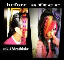 before + after dyeing  purple stripes / coontails by suki42deathlake