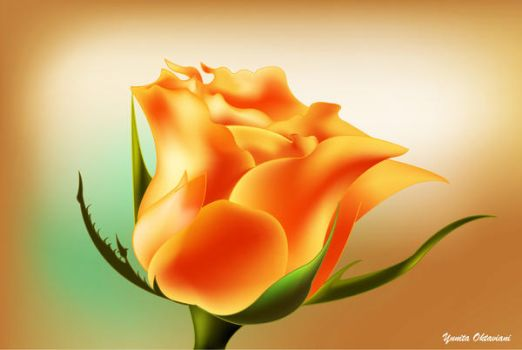 Orange Rose by itaocta