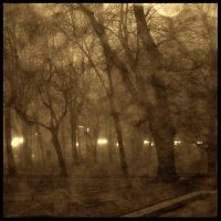 Romantic ghosts in the fog by nicolaperasso
