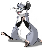 Opossum by Mimi-fox