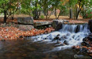 Campus Waterfall 1 by Savellla
