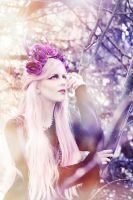 The Pastel Dream.. by Creative-Visions