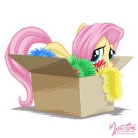 Fluttershy in a box by mysticalpha