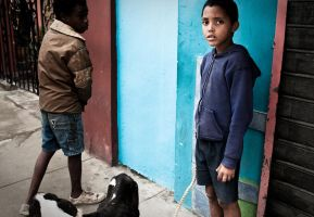 Cuban Boys and a Hungry Dog by gursesl