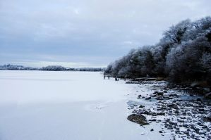 Lough Erne shore by Indigo-squirrel