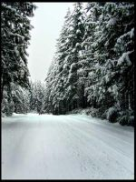 Snow Day 5, Snow Covered Road by MulchMedia