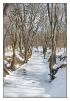 Snow stream, other direction.1946, with story by harrietsfriend