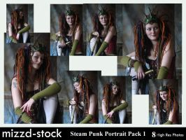 Steam Punk Q Portrait Pack 1 by mizzd-stock