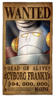 Franky Wanted Poster by PlanarShift