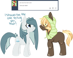 Ask Kyou 02 by Toxic-Delights